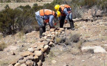 Collection system rehabilitation 34.5 kv. Energía Sierra Juárez