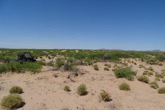 Border Solar Juárez – Chihuahua